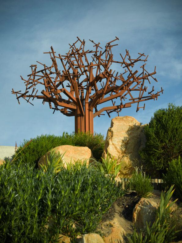 waterkloof-tree
