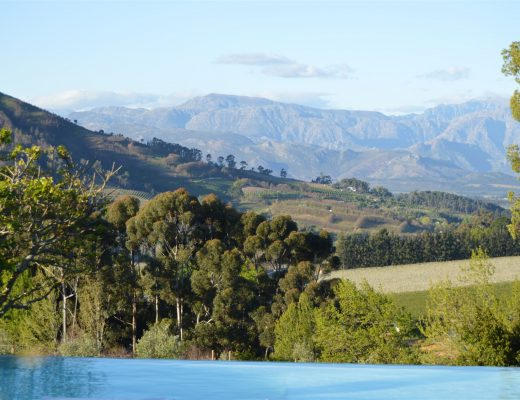 Stellenbosch: 5 Travel Tips from a local 33