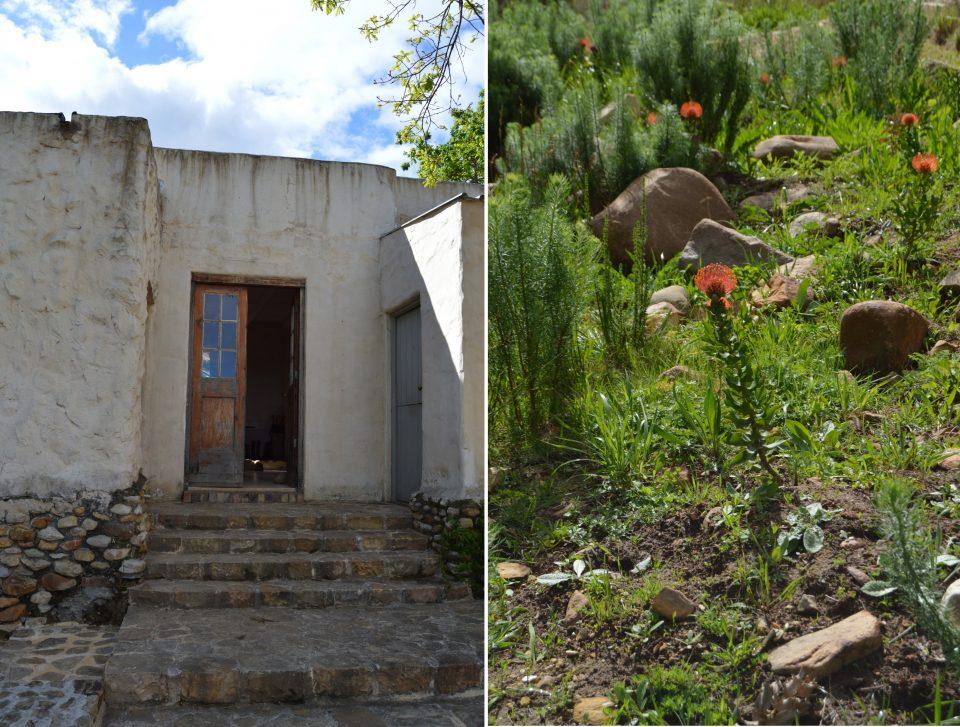 dylan-lewis-sculpture-garden-tour-hospitality-hedonist-5