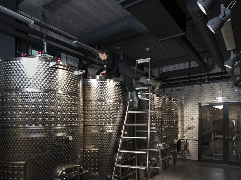 winery_jan-malmstrom