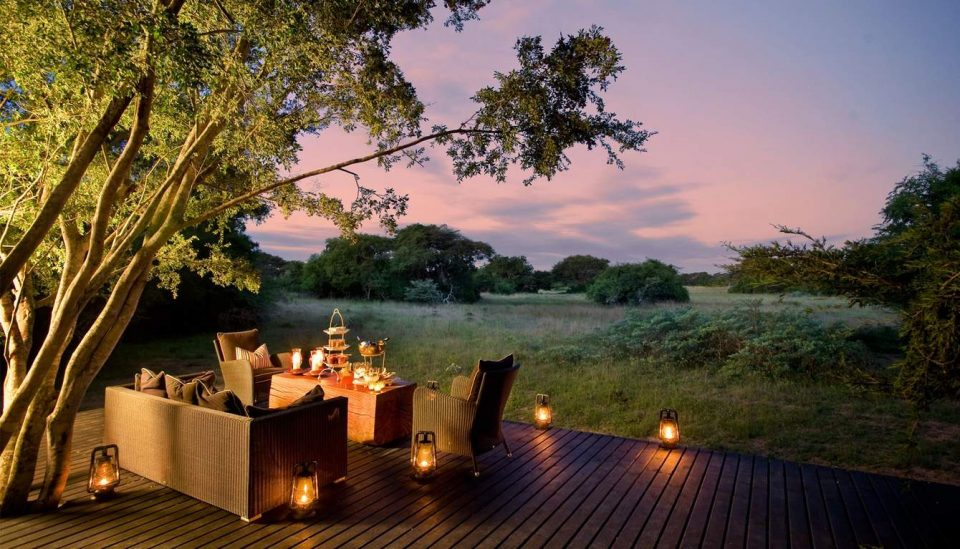 forest22.jpg.1340x0 default 960x549 - 4 South African Hotels you MUST visit in 2017