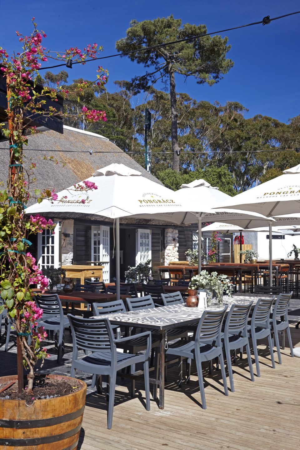HarbourHouse048 1 960x1440 - Constantia Nek: picturesque dining for every palette