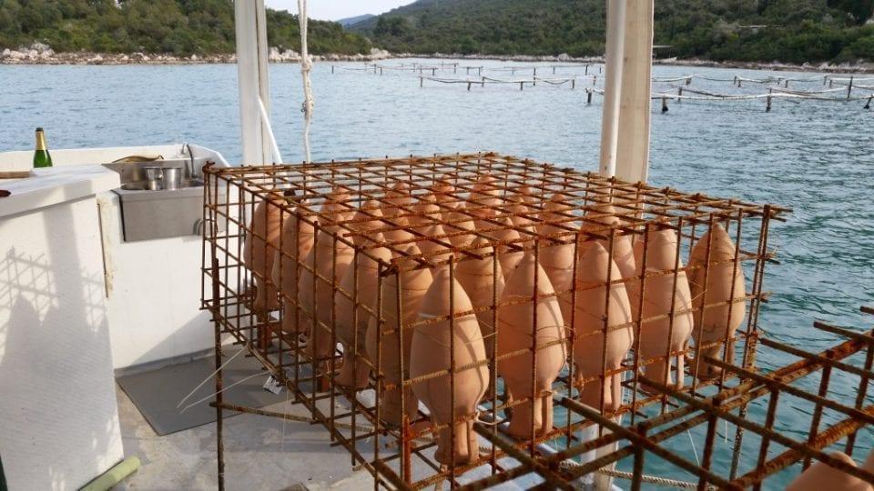 201503111527472 srcset large 960x540 - Edivo Vina : Underwater Winery