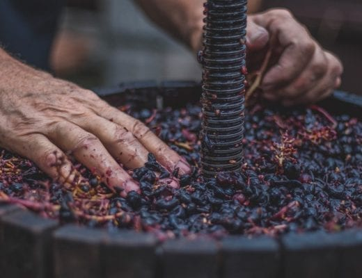 HOSPITALITY HEDONIST -SOUTH AFRICAN TRAVEL | FASHION | LIFESTYLE Get your feet dirty at Delheim's 2018 Harvest Festival image 1